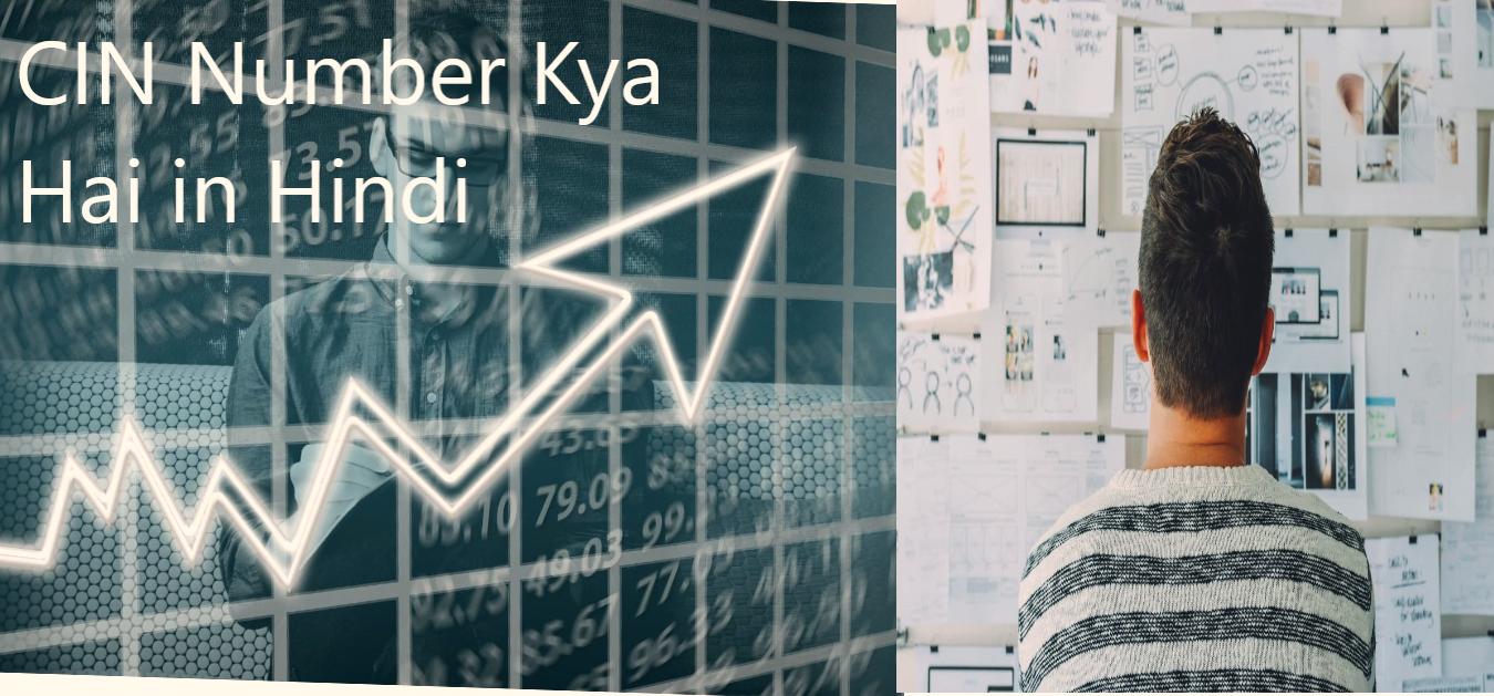 CIN Number Kya Hai in Hindi:मीनिंग, उपयोग,डिकोडिंग और फुल फॉर्म 2021